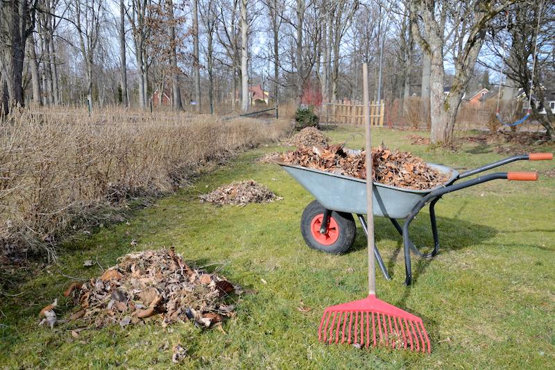Gartenpflege preiswert und schnell in Lüneburg - Hamburg - Winsen Luhe