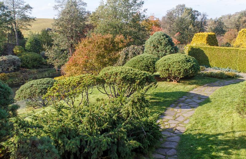 Gartenpflege gesucht in Lüneburg zum schneiden meiner Hecke